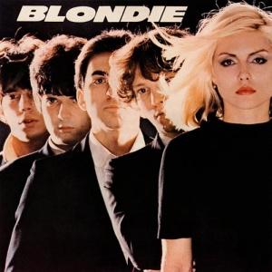 Blondi bee movie covers congratulate