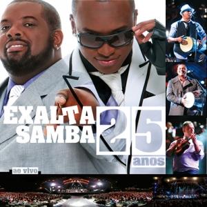 novo cd de exaltasamba 2013