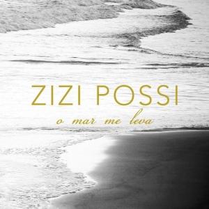 BAIXAR MUSICA ZIZI PERIGO DE POSSI